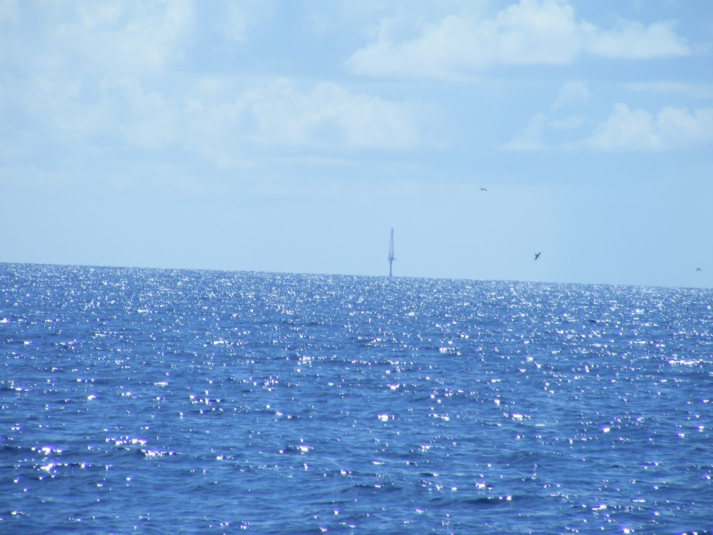 Marker light off the western coast of Florida.