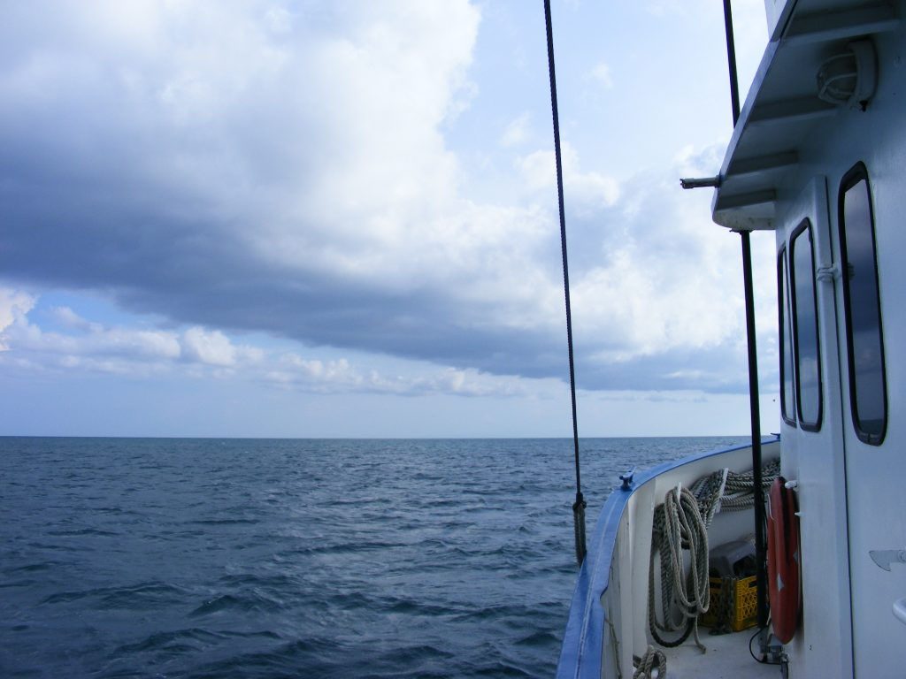 Off the coast of Belize, south of Placencia