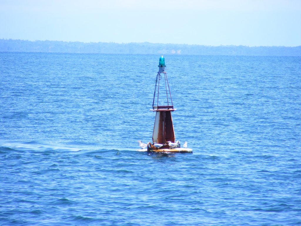 Livingston Buoy.