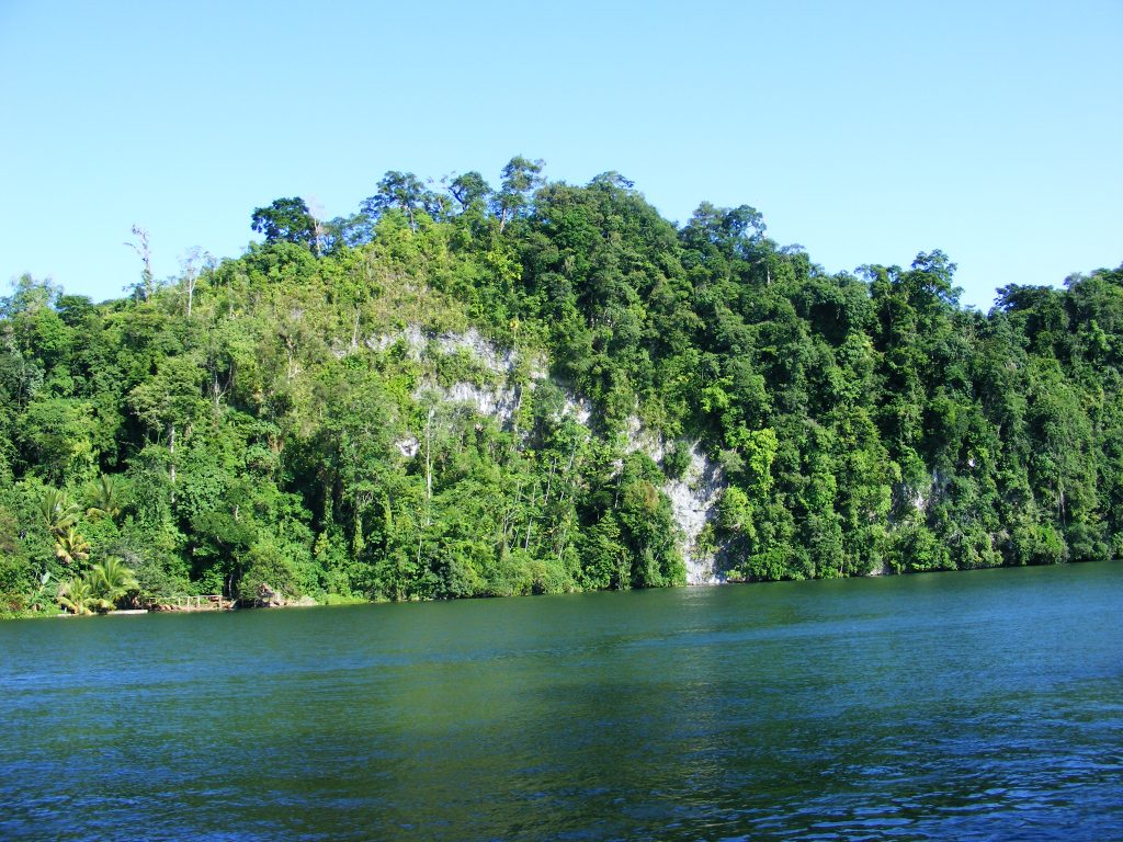 Along the Rio Dulce.